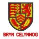Bryn celynnog School